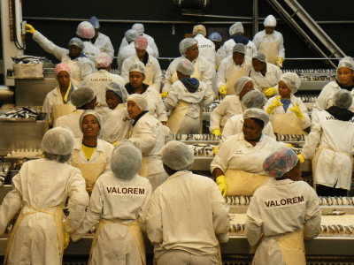 Production 5